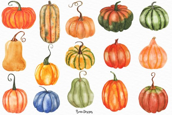 Download Free Watercolor Pumpkin Clipart Set Grafik Von Bonadesigns Creative for Cricut Explore, Silhouette and other cutting machines.