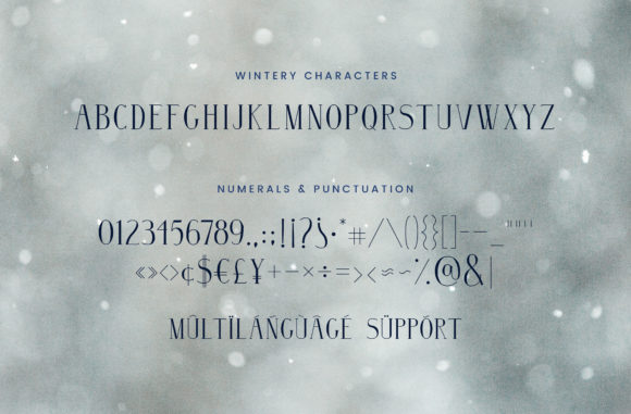 Print on Demand: Wintery Family Serif Font By Christine Teixeira - Image 3