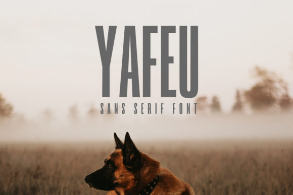 Print on Demand: Yafeu Family Sans Serif Font By Creative Tacos