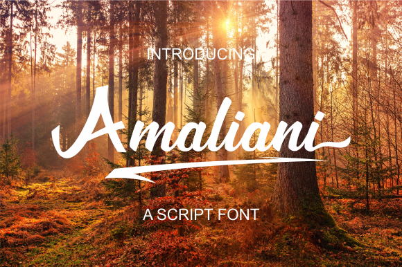 Print on Demand: Amaliani Script & Handwritten Font By Febri Creative
