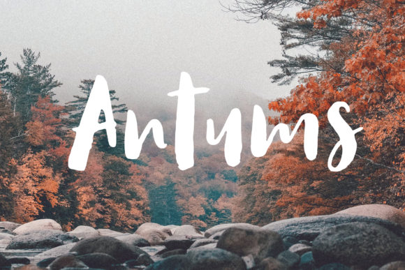 Print on Demand: Antums Script & Handwritten Font By SiwoxS