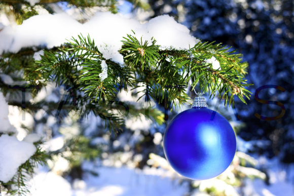 Blue Christmas Ornament Hanging On Forest Tree Branch Graphic By
