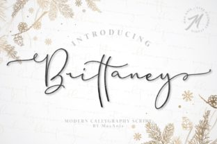 Brittaney Font By Mas Anis