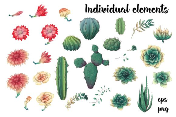 Cacti & Succulents Graphic By nicjulia Image 2