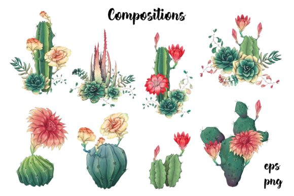 Cacti & Succulents Graphic By nicjulia Image 3