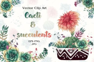 Cacti & Succulents Graphic Illustrations By nicjulia