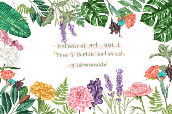 Colored Botanical Illustration Graphic Illustrations By salmanarulita