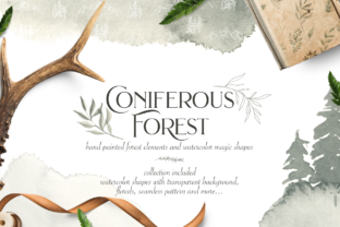 Coniferous Forest Graphic By BilberryCreate