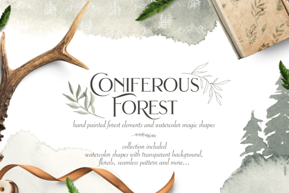 Coniferous Forest Graphic Illustrations By BilberryCreate