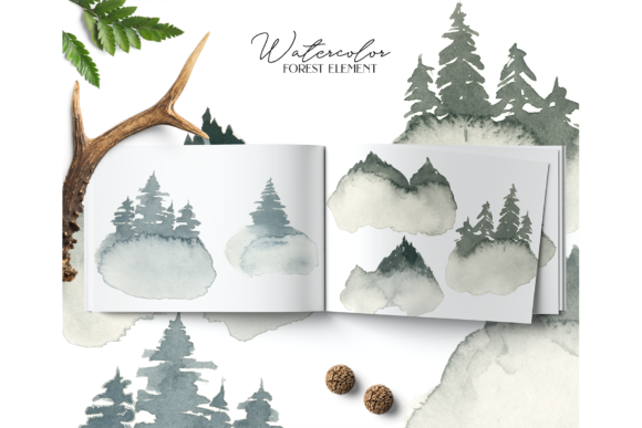 Coniferous Forest Graphic Illustrations By BilberryCreate - Image 7