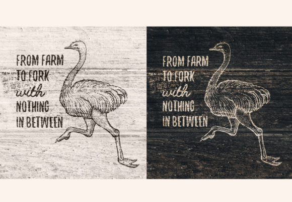 Farm Animals Collection Graphic Objects By ilonitta.r - Image 3