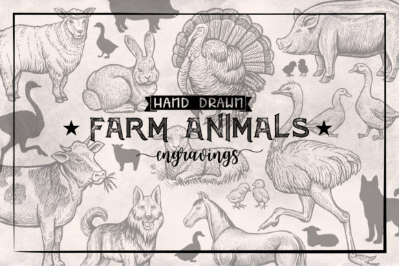 Farm Animals Collection Graphic Objects By ilonitta.r