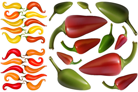 Fresh Chili with Gradient Mesh Graphic Illustrations By MrBrahmana