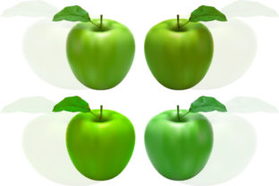 Fresh Green Apple with Leaf Graphic By MrBrahmana