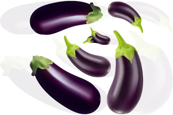Fruit of Fresh Eggplant with Gradient Mesh Graphic Illustrations By MrBrahmana