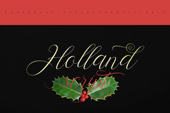 Print on Demand: Holland Script Script & Handwritten Font By Stripes Studio - Image 6