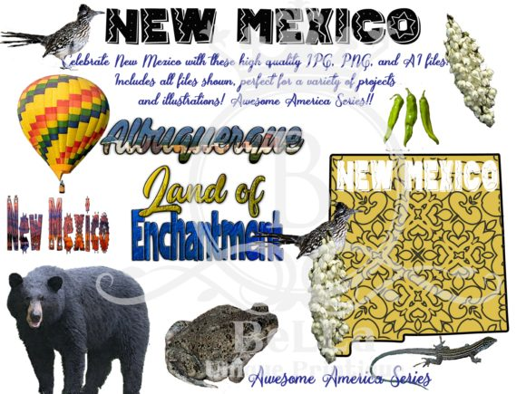 New Mexico - Awesome America Series Graphic Illustrations By BellaUniquePrintique