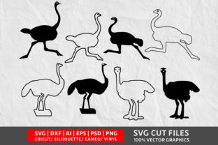 Ostrich Head SVG Graphic By Design Palace