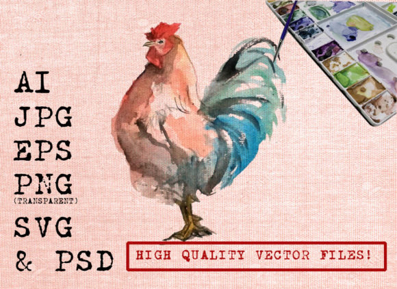 Rooster Illustration Graphic Illustrations By Ambar Art - Image 1
