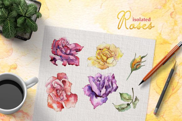 Download Free Rose Multi Colored Watercolor Graphic By Mystocks Creative Fabrica for Cricut Explore, Silhouette and other cutting machines.