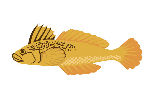 Download Free Round Goby Fish Svg Cut File By Creative Fabrica Crafts for Cricut Explore, Silhouette and other cutting machines.