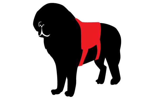 Download Free St Bernard Silhouette Wearing Service Dog Vest Svg Cut File By for Cricut Explore, Silhouette and other cutting machines.