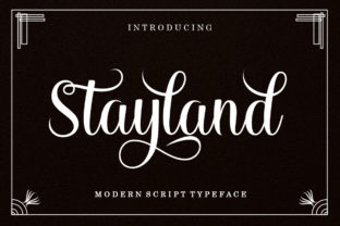 Print on Demand: Stayland Script & Handwritten Font By LetterFreshStudio
