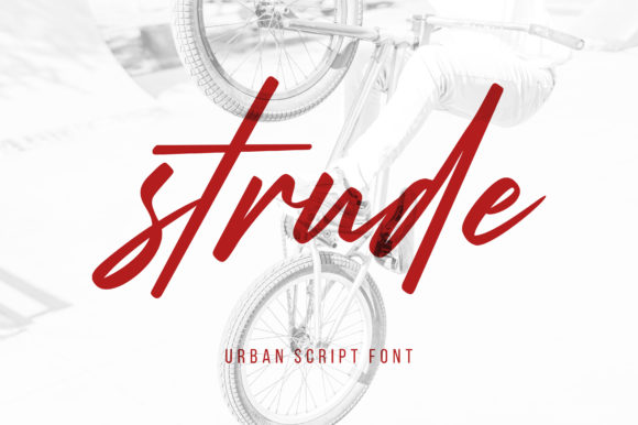 Print on Demand: Strude Script & Handwritten Font By Letteralle