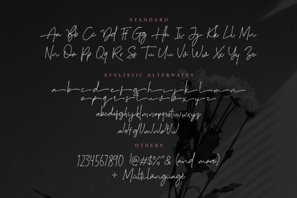 Print on Demand: Suddenly Family Script & Handwritten Font By saridezra - Image 9