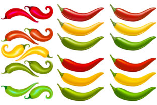 Vector Illustration of Chili Graphic By MrBrahmana