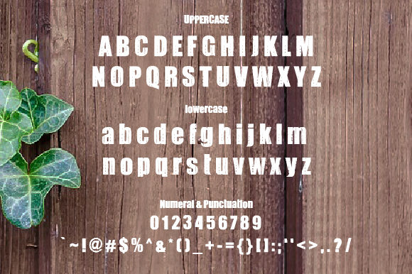 Print on Demand: Wooden Decorative Font By da_only_aan - Image 2