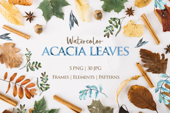 Print on Demand: Acacia Watercolor Leaves Graphic Illustrations By MyStocks