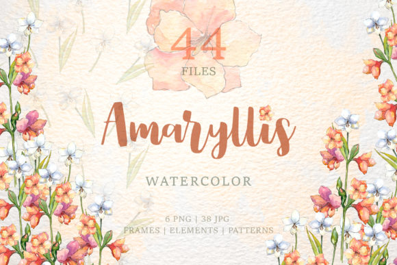Print on Demand: Amaryllis Flowers Watercolor Png Graphic Illustrations By MyStocks - Image 1