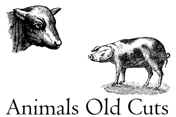 Print on Demand: Animals Old Cuts Dingbats Font By Intellecta Design - Image 2