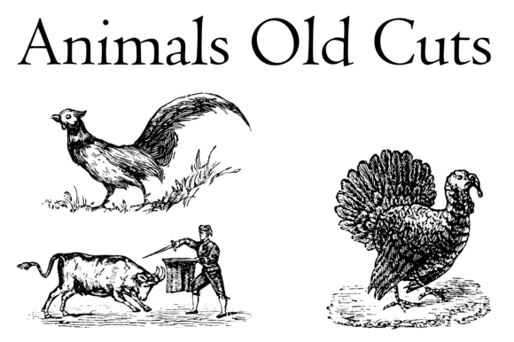 Print on Demand: Animals Old Cuts Dingbats Font By Intellecta Design - Image 3