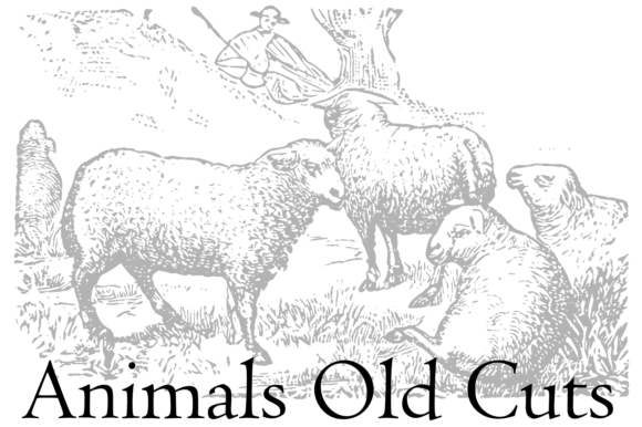 Print on Demand: Animals Old Cuts Dingbats Font By Intellecta Design - Image 4