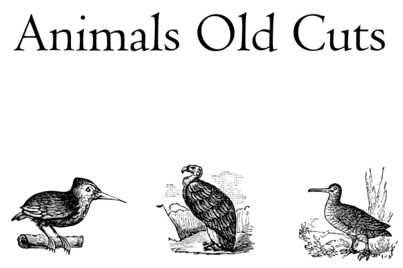 Print on Demand: Animals Old Cuts Dingbats Schriftarten von Intellecta Design