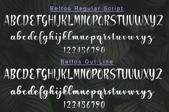 Print on Demand: Bettos Script & Handwritten Font By StudioRz - Image 6
