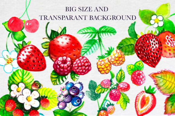 Print on Demand: Big Watercolor Berry Set Graphic Illustrations By Red Ink - Image 6