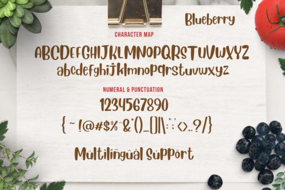 Blueberry Font By Din Studio Image 4