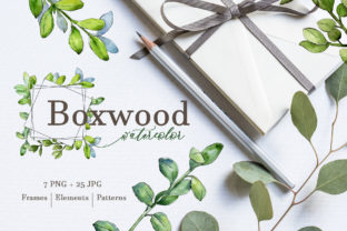 Boxwood Watercolor Png Graphic By MyStocks
