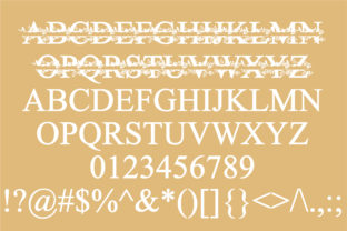 Print on Demand: Christmas Floral Display Font By Illustration Ink 2
