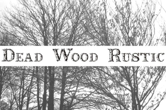 Print on Demand: Dead Wood Rustic Display Font By Intellecta Design