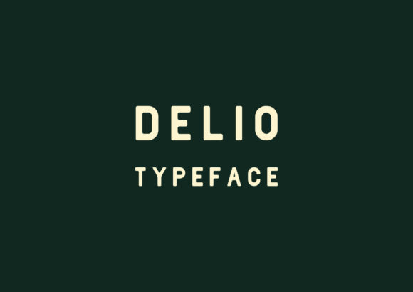 Print on Demand: Delio Sans Serif Font By Kevgusar