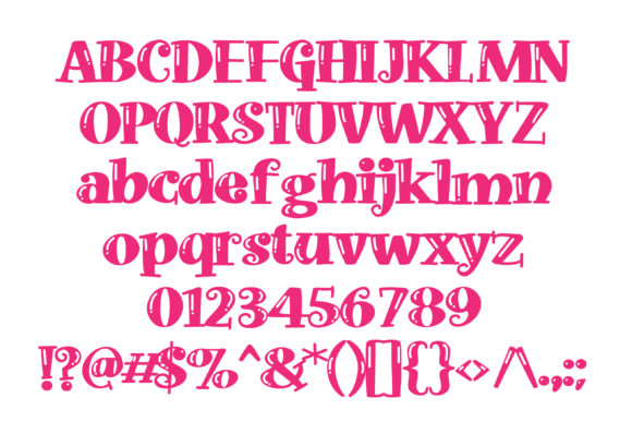 Print on Demand: Doohickey Shine Serif Font By Illustration Ink - Image 2
