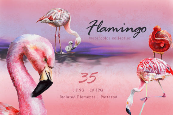 Print on Demand: Flamingo Watercolor   Graphic Illustrations By MyStocks