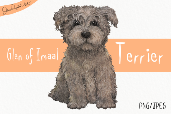 Glen of Imaal Terrier -Grey Graphic By Jen Digital Art