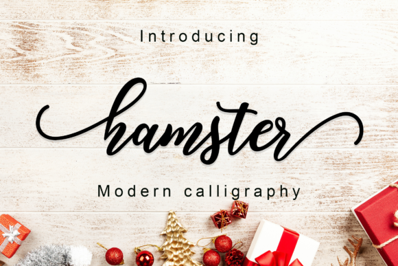Print on Demand: Hamster Script Script & Handwritten Font By Amarlettering