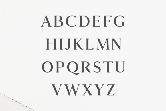 Print on Demand: Hyogo Serif Font By Creative Tacos - Image 2