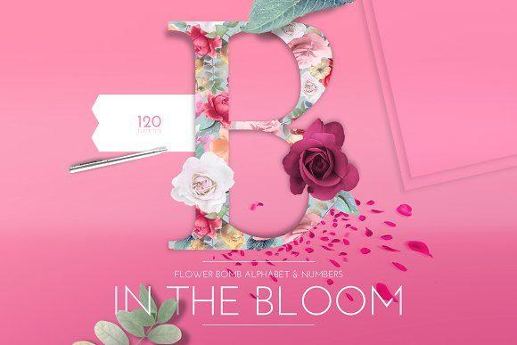 Print on Demand: In the Bloom Graphic Illustrations By Anna Babich